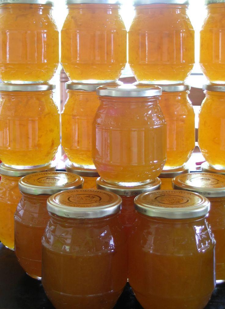 The Good Life: Grapefruit Glut - Marmalade