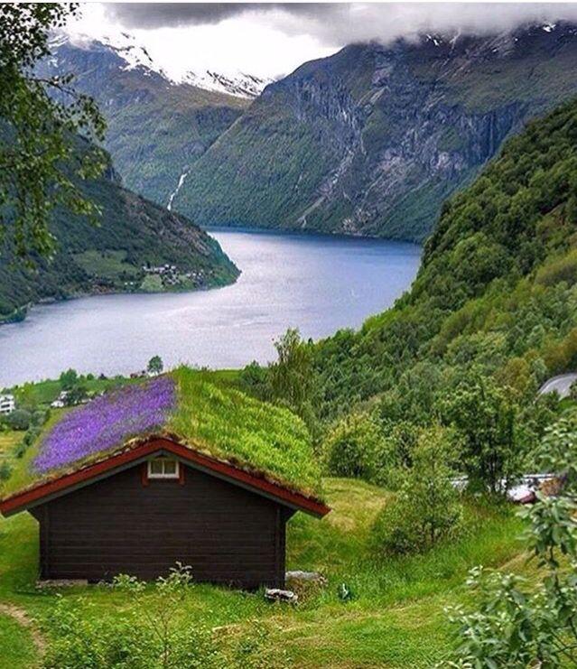 Gereinger Noruega