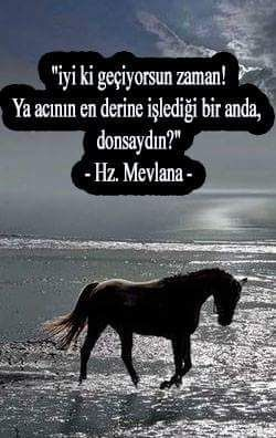 Hz.Mevlana (k.s)