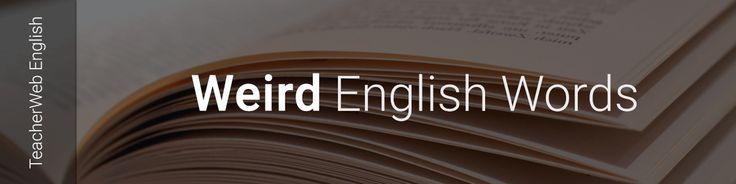 Weird Word of the Week. Previse - Verb. To predict an event. TeacherWeb English Grammar & Phonetics. Web www.teacherwebenglish.com App https://goo.gl/jR7CKr