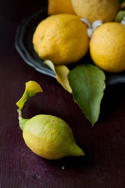 limoni... del mio giardino!