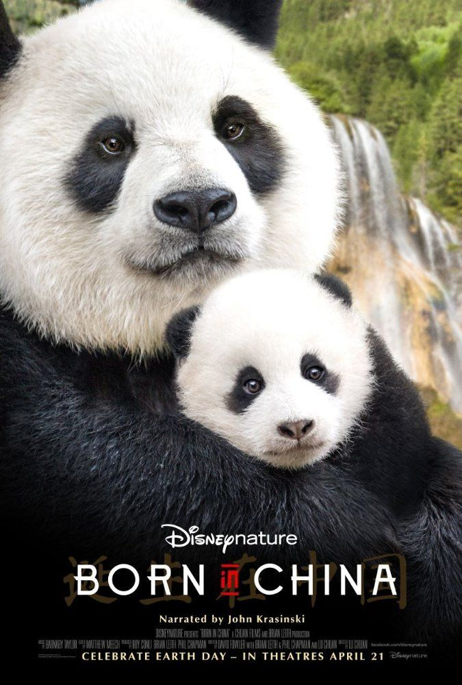 Born in China  (2017)  G  Living in Atlanta, I have gotten to see not one but two sets of panda twins born here. This film will show us how pandas live in the wild, along with other animals like snow leopards and monkeys in the forests and tundra of China. I can't wait to see it.  https://lastonetoleavethetheatre.blogspot.com/2017/04/the-fate-of-furious.html