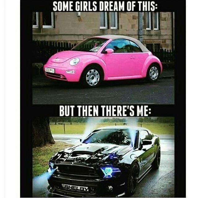Mustang pride. #meme
