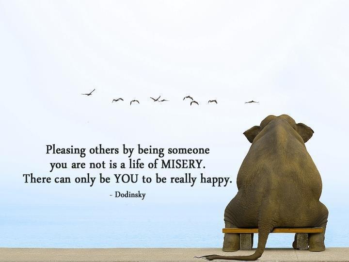 Elephant Good Luck Quote: 77 Best Elephants Images On Pinterest