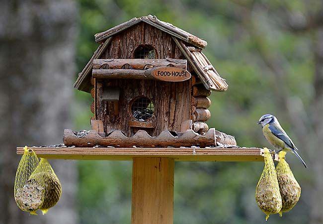 ber ideen zu vogelfutterhaus selber bauen auf pinterest vogelfutterhaus. Black Bedroom Furniture Sets. Home Design Ideas