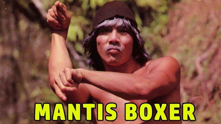 Wu Tang Collection - Mantis Boxer