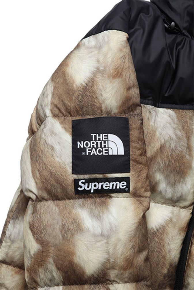 Supreme x The North Face – Nuptse Jacket and Nuptse Vest | Freshness