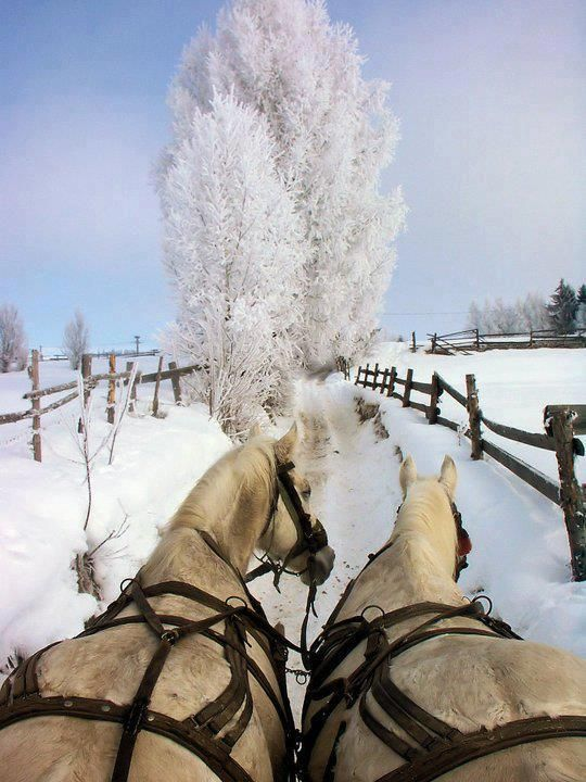 Winter Fairytale in #Romania ...