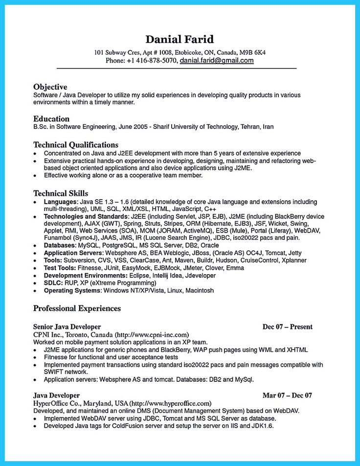 Click Here To Download This Programmer Or Database Developer Or Network  Administrator Resume Template Http Employee