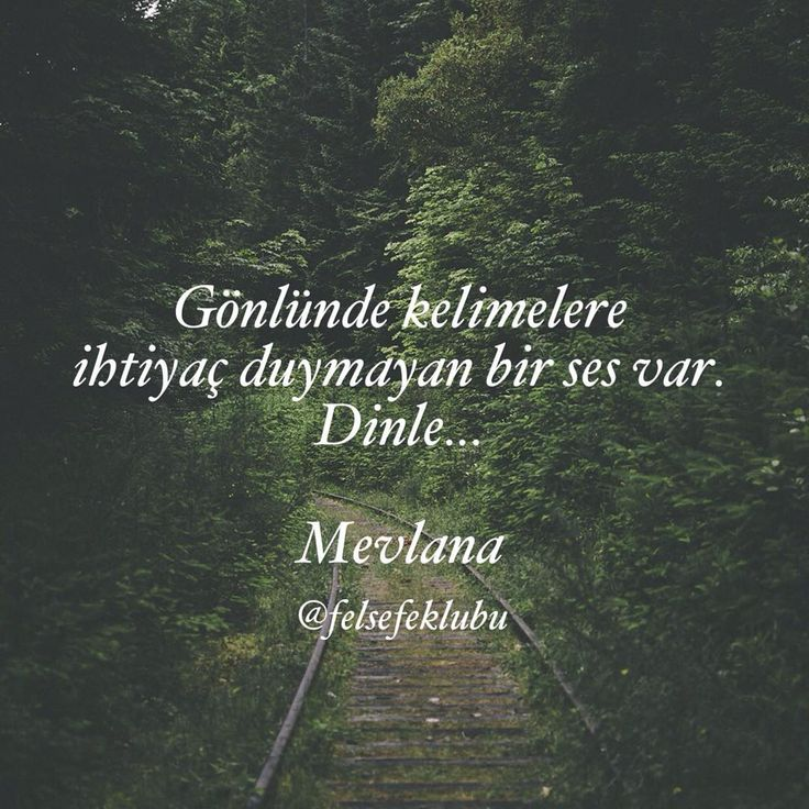 Mevla'na