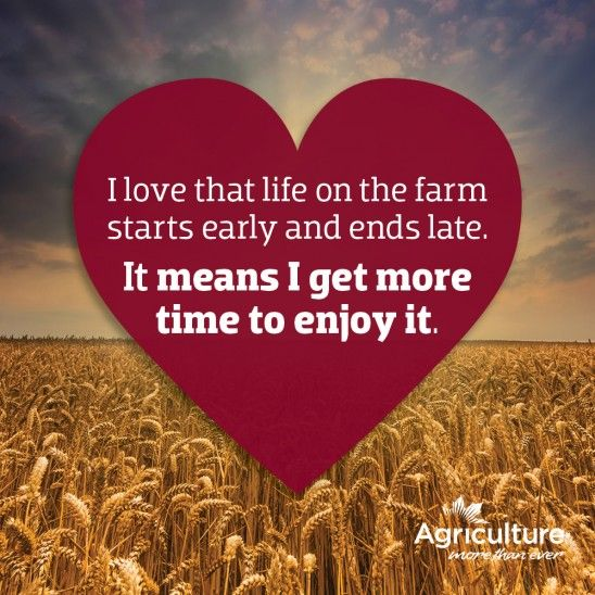 Farming Quotes: Best 20+ Farm Girl Quotes Ideas On Pinterest