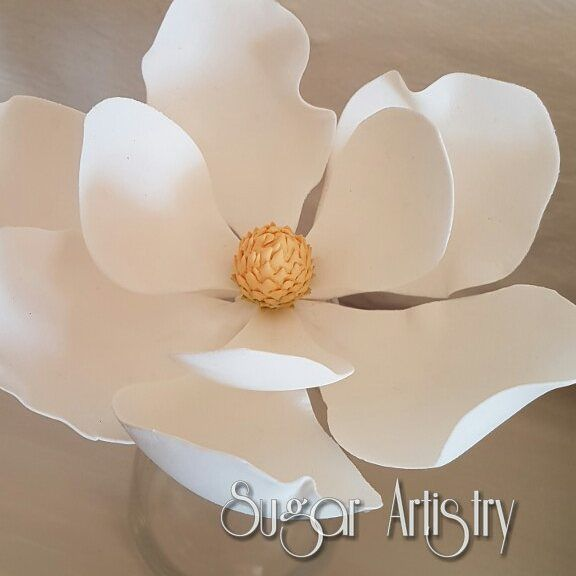 "68 Likes, 12 Comments - Sugar Artistry (@sugarartistrykzn) on Instagram: ""My favourite...the Magnolia Sugarpaste. #sugarartistry #sugarart #sugarcraft #sugarflowers…"""
