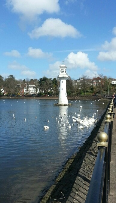 Roath Park, Cardiff. Used to love the park and rowing on the lake.
