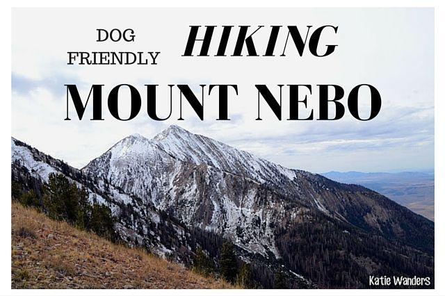 Payson Dog Friendly Hikes