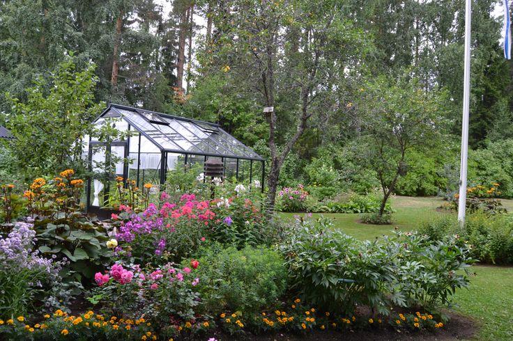 Kasvihuone elokuussa 2013 - Our greenhouse in August 2013
