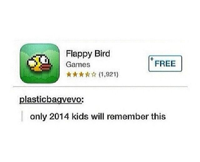 In loving memory of our baby, Flappy Bird