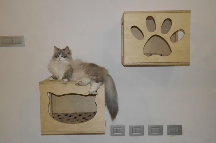 Rendi cat-friendly la tua casa con i cubi da parete Cat Wood Design