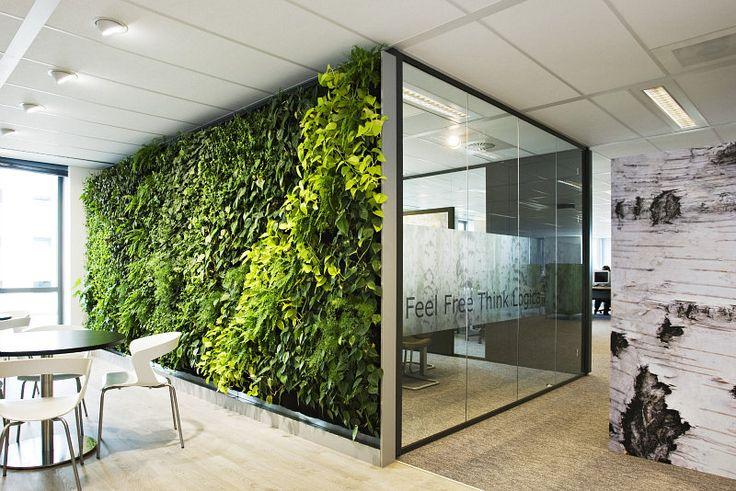 Plantenwand, de natuurlijke systeemwand voor uw kantoor.