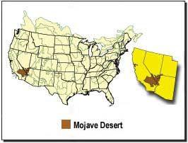 Mojave Desert Map - desertusa.com