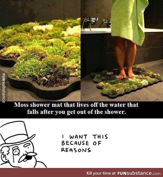25 best ideas about dumb inventions on pinterest stupid for Moss shower mat