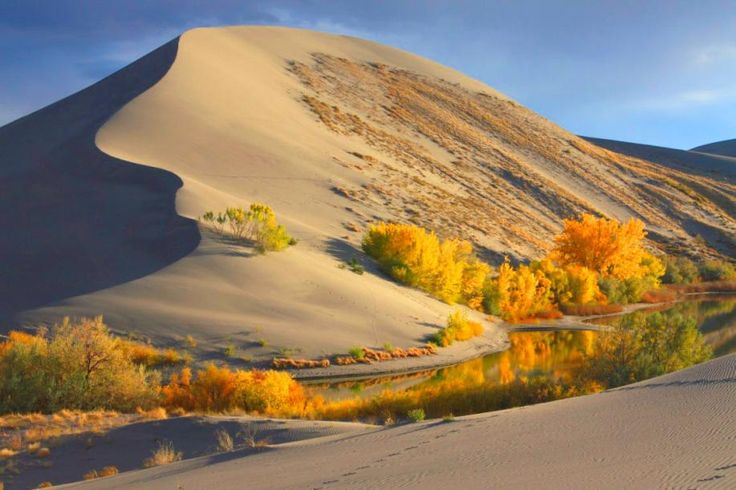 Mountain Home, ID - Bruneau Dunes State Park is site of the tallest single-structured sand dune in North America. The dune is 470 feet high. Activities include fishing, bird watching, camping, hiking, swimming and viewing the stars at Idaho's only public observatory.