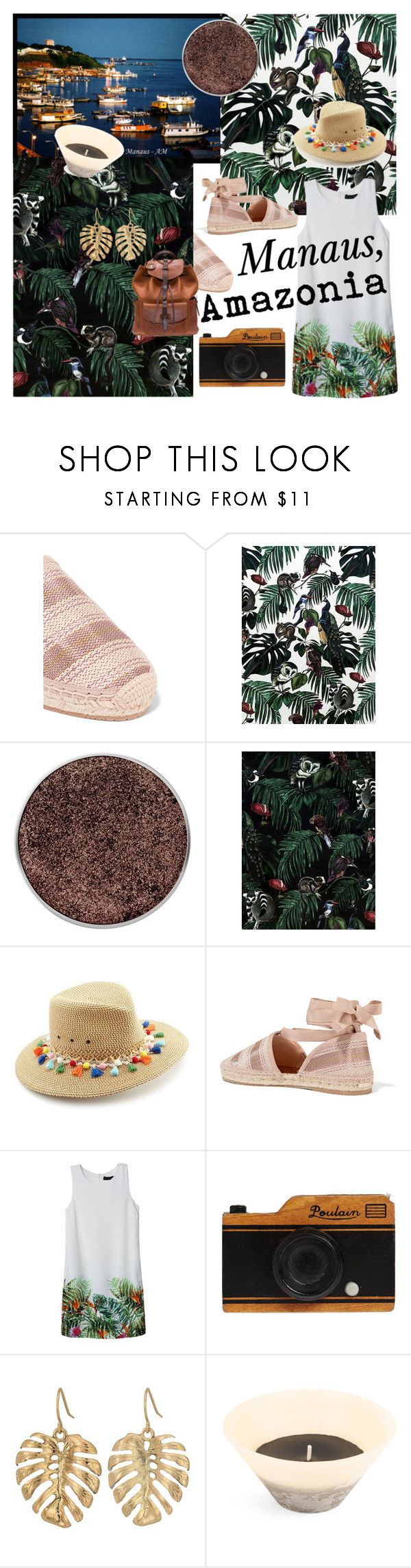 """Visit #brazil #amazoniacruise"" by no-face-fashion ❤ liked on Polyvore featuring Jimmy Choo, Witch & Watchman, Eric Javits, The Sak and Will Leather Goods"