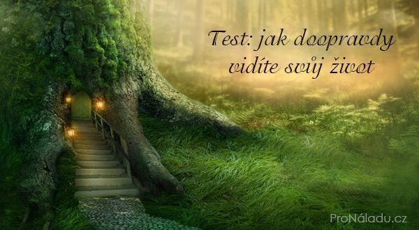 Test: jak doopravdy vidíte svůj život