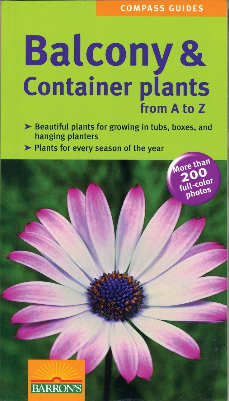 Balcony and Container Plants - Pinetree Garden Seeds - Books