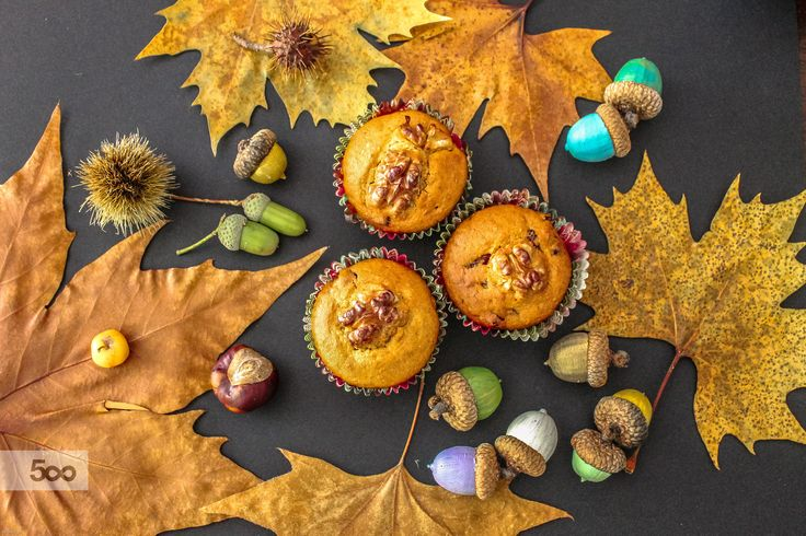 Muffin Forest by Barbara  on 500px