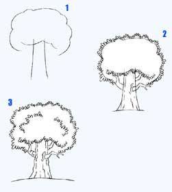 Wir zeichnen einen Baum Bäume zeichnen lernen. Zeichnen lernen