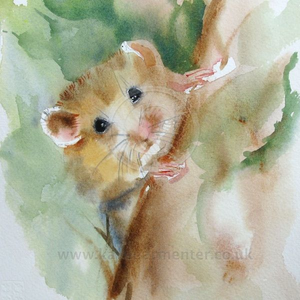 Field Mouse In 2019 Watercolor Animals Animal Paintings