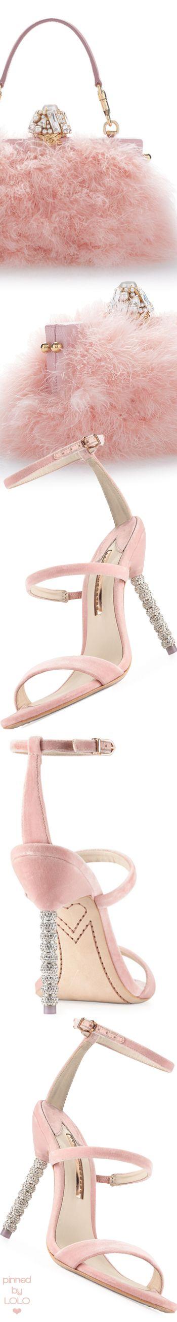 Sophia Webster Rosalind Velvet Sphere-Heel Sandal and Dolce & Gabbana Bag