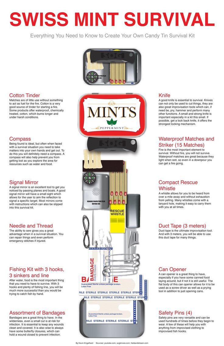 The Homestead Survival | Swiss Mint Survival – Mini Survival Kit Perfect For A Bug Out Bag | http://thehomesteadsurvival.com