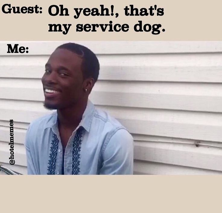 | Hotel | Hotels | Hospitality | Customer Service | Guest Services | Front Desk | Guests | Complaints | Memes | Sarcasm | Joking | Humor | Funny | Hilarious | Work | Job | Crazy Guests | Night Auditor | Night Audit | Housekeeping | Valet | F&B | Food & Beverage | Guest Service | Guest Services | Hoteliers | eCards | A lot of these are from Tumblr & Google. If you're the artist/wise guy responsible please tell me so I can give credit :)