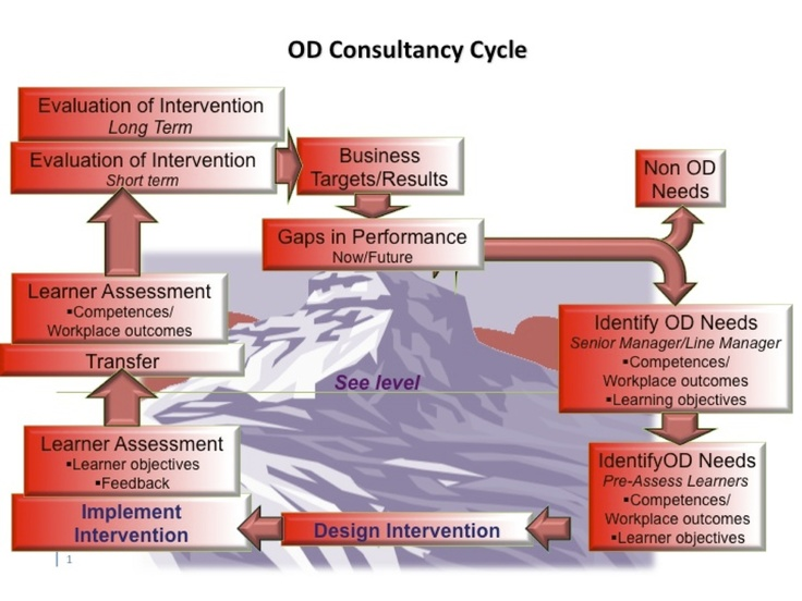 The Organisation Development Consultancy Cycle