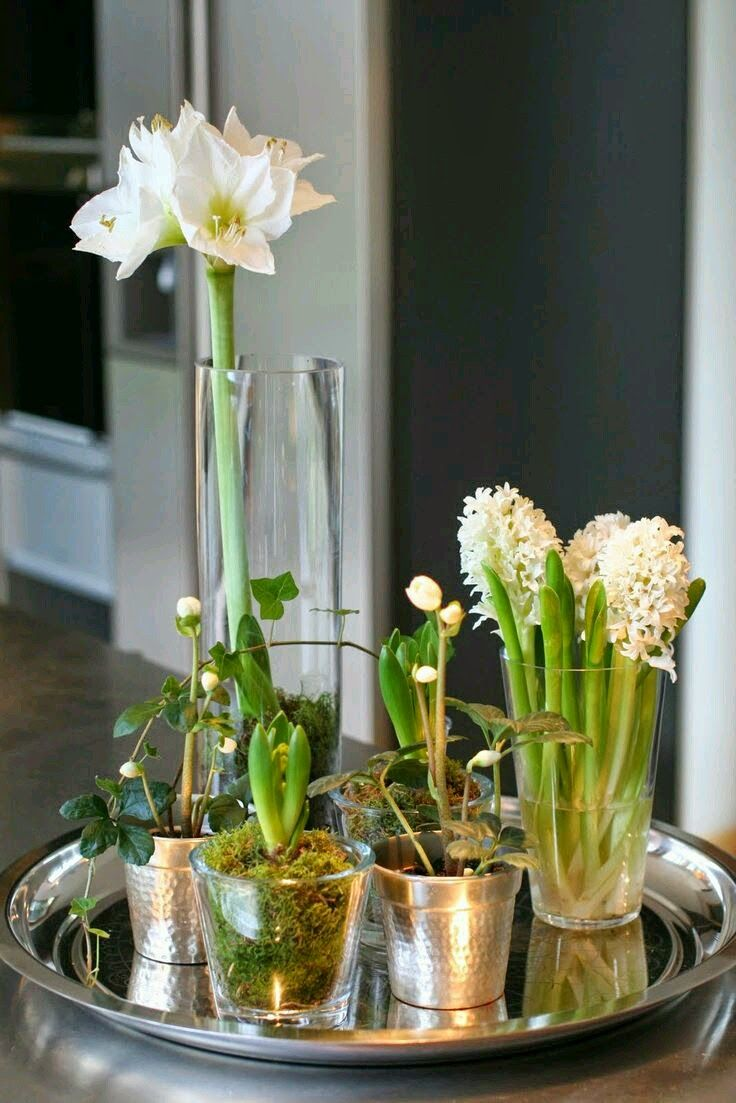 What a simple setup for such a beautifully, understated bit of seasonal décor!  #HolidayEntertaining #PaperWhites #HolidayDecor