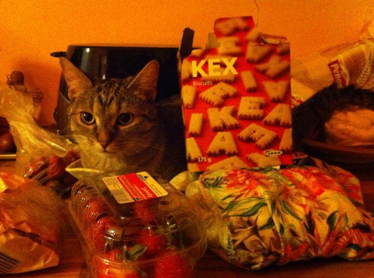 Maxík keksík:)