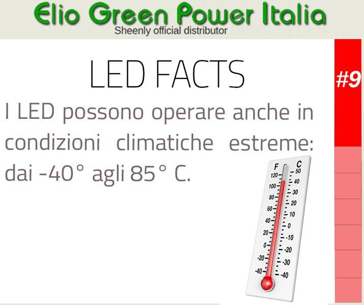 Led Fact n.9