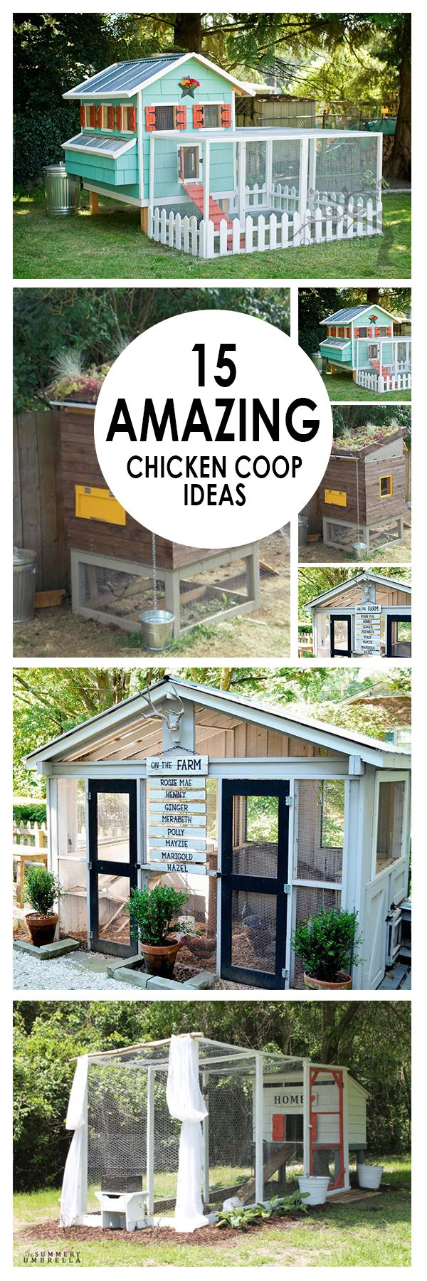 15 Amazing Chicken Coop Ideas - Bees and Roses