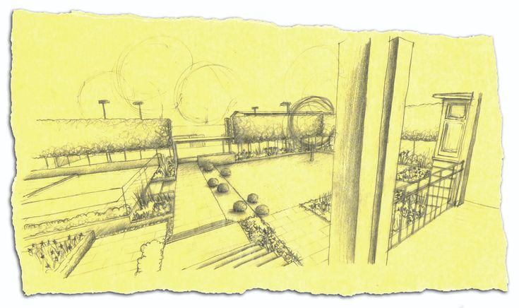 Perspective sketch by Ian Barker Garden design.