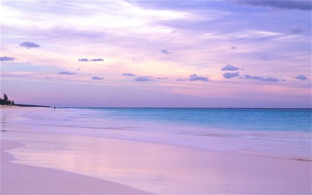 This is not just the sunset, the sand on #Pink Sands Beach in #Bahamas is actually pink, thanks to microscopic insects (#foraminifera) who leave their pink shells behind to be crushed into the sand by the waves when they die. Nature never stops surprising.: Bahama Beaches, Pink Beaches, Pink Shells, Pink Sand Beach, The Bahama, The Waves, Purple Sands Beaches, Coral Insects, Pink Sands Beaches Bahama