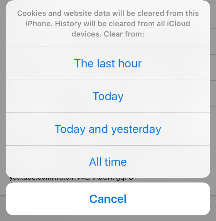 Whether you agree with it or not, your iPhone stores a lot of data about what you do on your device, in particular, your browsing history. For the most part, this is only to help you and to be more convenient over time. For example, the history feature in Safari keeps track of all the sites you...