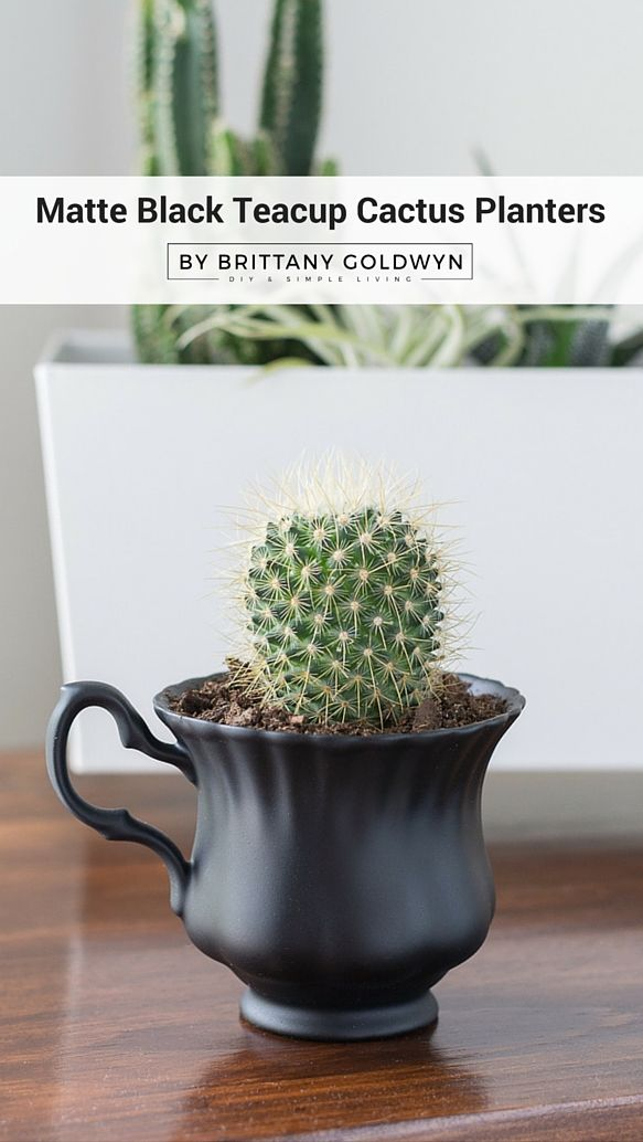 It's amazing what a little paint can do! See how I repurposed a sweet gift from my uncle into something more practical that goes better with my decor | Painted Black Teacup Cactus Planters