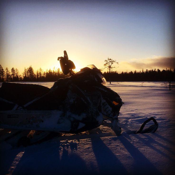 Beautiful morning in Sälen Sweden lynx boondocker