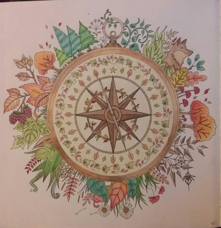 Johanna Basford Enchanted Forest Combination Of Staedtler Noris Club 36 Pc Set Pencils And Barnes Nobles Watercolor 24