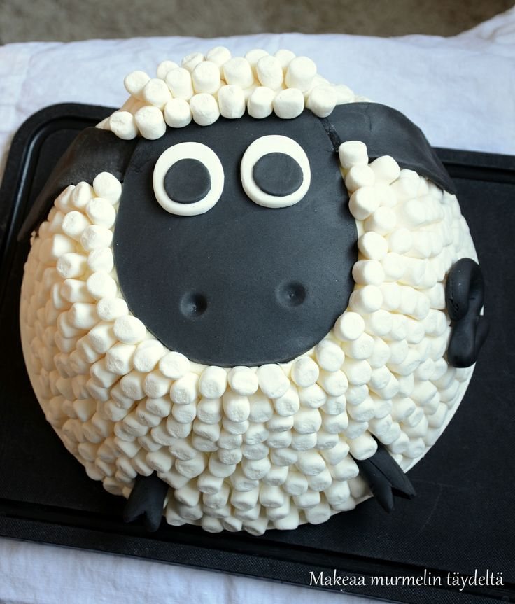 timmy the sheep cake
