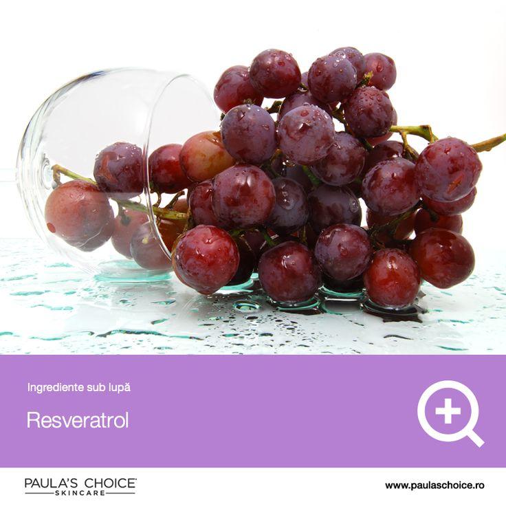 Resveratrolul, ca orice antioxidant, are o incredibilă putere protectivă a pielii. În natură, se găsește în diverse alimente precum struguri, nuci, fructe și vin roșu. Aplicat local, resveratrolul protejează împotriva daunelor solare, îmbunătățește sinteza de colagen și reduce daunele celulare. Este un antioxidant stabil și potent care merită inclus în orice produs de îngrijire a pielii. Studiile au arătat că resveratrolul inhibă dezvoltarea tumorilor.