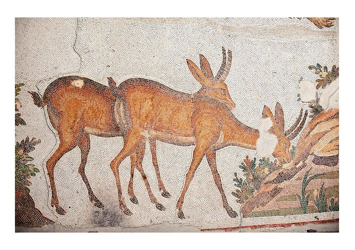 6th century Byzantine Roman mosaics of deer from the peristyle of the Great Palace from the reign of Emperor Justinian I. Istanbul, Turkey. | © Paul Randall Williams 2012