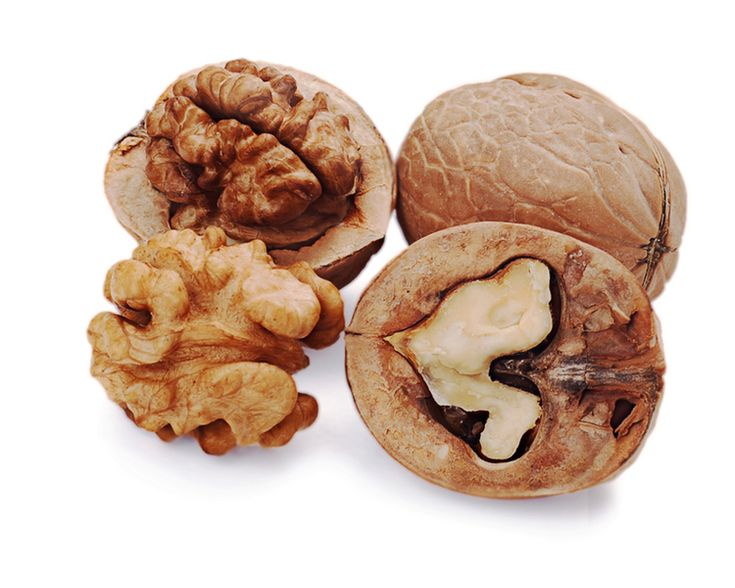 TIP OF THE WEEK: Did you know that walnuts are the ONLY nuts that provide a significant amount of the fatty acid ALA (alpha linolenic acid)? This means that just a handful of walnuts every day can help increase your antioxidant count, decrease your diabetes risk, and improve your memory! Start snacking!