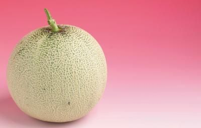 How to Grow Cantaloupe in a Container Garden